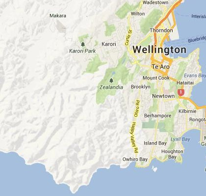 satellite map image of Brooklyn, New Zealand shows road/location map